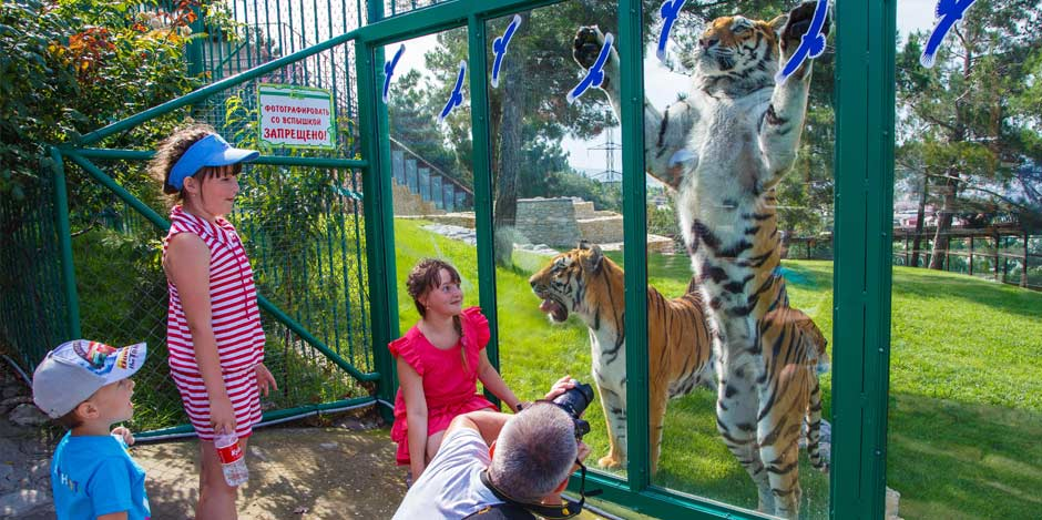 Игровые автоматы зоопарк сафари online аппараты игровые