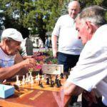 Геленджикскому  шахматному клубу «Гроссмейстер» 40 лет