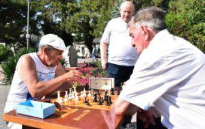 Геленджикскому шахматному клубу 40 лет